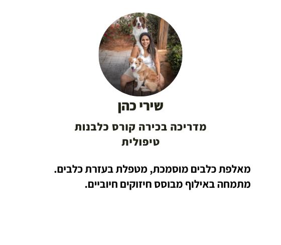 Copy of הילה גרינברג (5)
